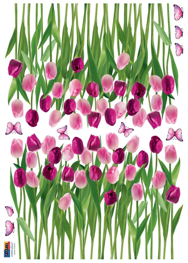 Cvetoči tulipani-118